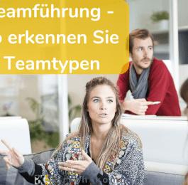 Teamführung so erkennen Sie Teamtypen
